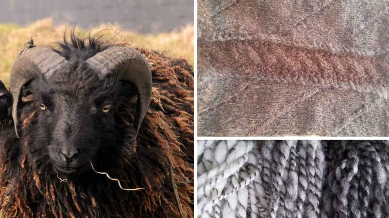 Mouton Ouessant- Snood en Ouessant et Alpaga - Fil de laine en Bleue du Maine et Ouessant